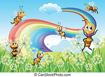 arco íris, abelhas, céu, hilltop
