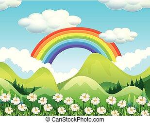 arco íris, cena, floresta