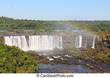 arco íris, ensolarado, cedo, iguassu, cachoeiras, maior, earth., dia, morning.