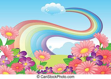 arco íris, flores, céu, hilltop