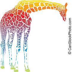 arco íris, girafa, vetorial