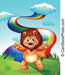 arco íris, leão, feliz, céu, hilltop