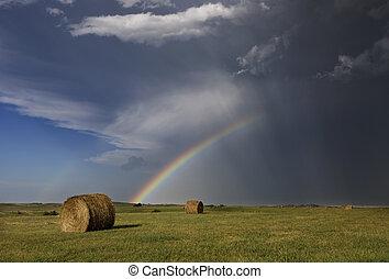 arco íris, pradaria, granizo, tempestade