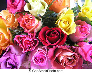 arco íris, rosas