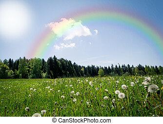 arco íris, sobre, prado