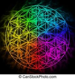 arco íris, vida, flor, geometria, símbolo, -, aura, sagrado