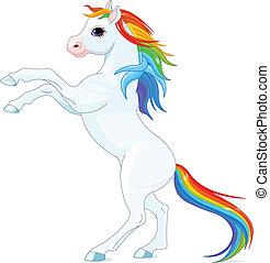 arco irirs, caballo