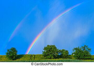 arco irirs, en, un, cielo azul, después, el, lluvia