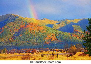 arco irirs, oro, tamarack, resumen, missoula, árboles, ...