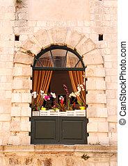 arco, janela, com, orquídeas