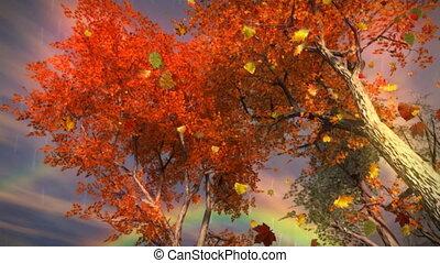 arcobaleno, (1035), fogli caduta, pioggia, cadere