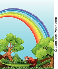arcobaleno, campo