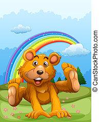 arcobaleno, felice, indietro, orso, gioco