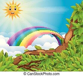 arcobaleno, sopra, foresta