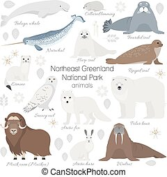 Arctic animal set. White polar bear, narwhal, whale, musk...
