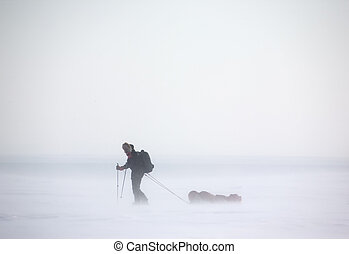Arctic Expedition - A single person on a winter expedition ...