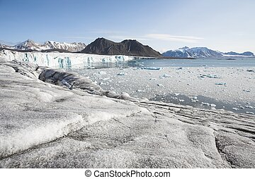 Arctic glaciers, mountains and fjord