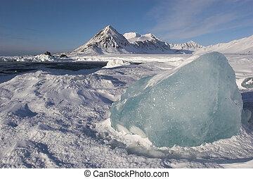 Arctic icy landscape