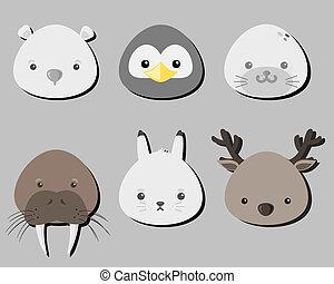 A set of Arctic mammals.