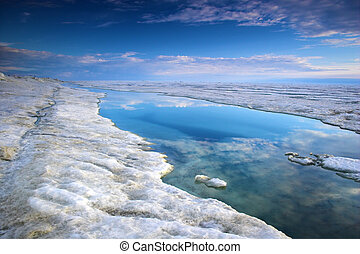 Arctic Ocean - Arctic ocean with ice, snow and water near ...