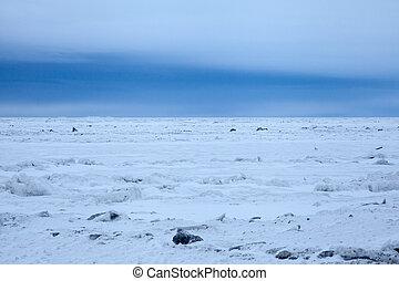 Arctic Sea Ice - Arctic sea ice outside a rural Alaskan...