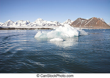 Arctic summer landscape
