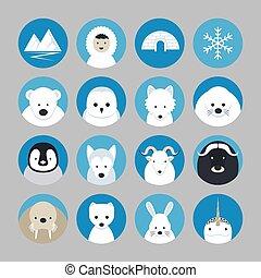arctique, animaux, icônes, ensemble, plat