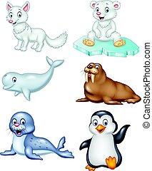 arctique, ensemble, animaux, dessin animé, collection