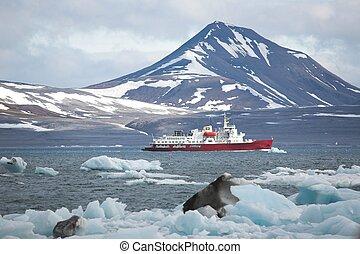 arctique, fjord, bateau, rouges