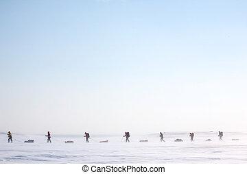 arctisch, expeditie