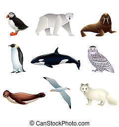 arctisch, vector, dieren, set