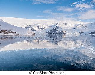 arctowski, continente, baía, enseada, porto, lester, península, antártica, neko, andvord