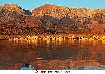 ardent, orange, coucher soleil, sur, lac mono