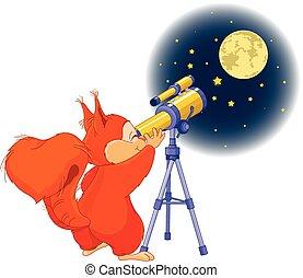 ardilla, astrónomo