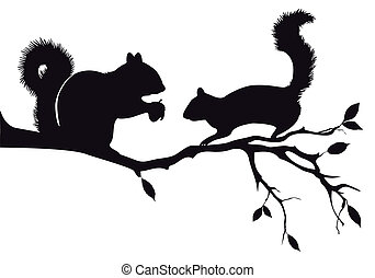 ardillas, en, árbol, vector