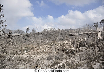 Area Damaged by Disaster