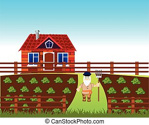 Area with vegetable garden