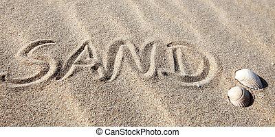 areia, escrito, praia