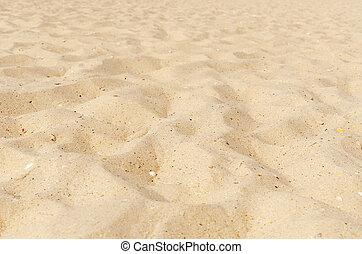 areia, ligado, praia, como, fundo