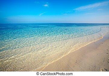 areia, praia tropical