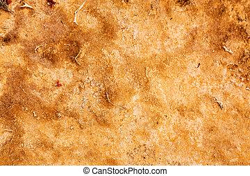 arena, coloreado, plano de fondo