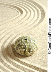 arena, línea, pilluelo