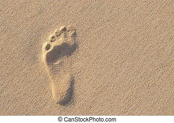 arena, naturaleza, sol, humano, photo., asombroso, arriba, ...