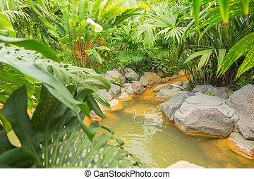 Arenal hot spring, Costa Rica