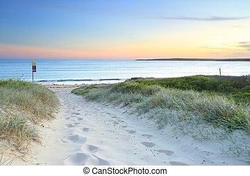 arenoso, caminho, para, greenhills, praia, em, anoitecer,...
