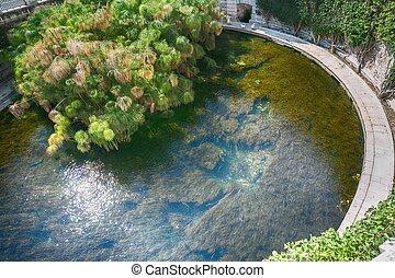 Aretusa Fountain in Ortigia, Syracuse, Sicily, Italy -...