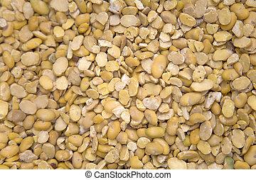 Argan seeds