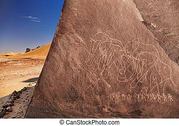 argelia, desierto, sáhara