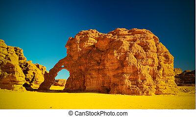 argelia, resumen, elefante, parque, formación, tikoubaouine,...