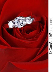 argent, bague fiançailles, dans, rose rouge
